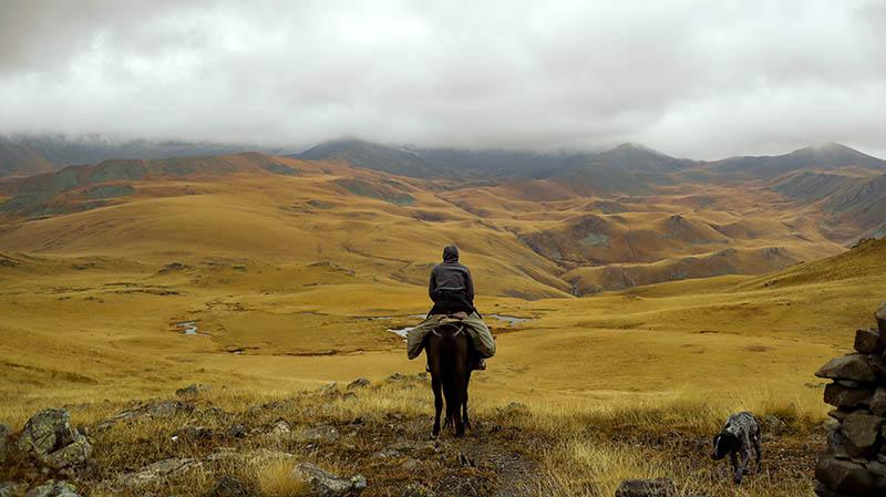 lagodekhi national park mit pferd und guide