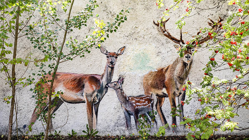 tschernobyl graffiti tagesausflug